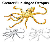 Doodle animal for greater blue-ringed octopus stock illustration