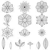 Doodle art flowers. Hand drawn herbal design elements Royalty Free Stock Photo