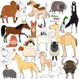 Doodle of Asian breed domestic animals. Various farm and pet animals bred in Asia, cute domestic animal doodle set stock illustration