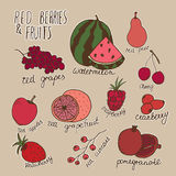 Doodle berries and fruits. Vector hand drawn illustration with white outline.  Stock Image