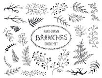 Doodle branches. Hand drawn branches collection. Set of inc doodle branches isolated on white background. Floral decorative elements for postcard and invitation Stock Images