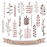 Doodle branches set. Hand drawn branches collection. Set of simple doodle branches  on white background. Vintage inc branches. Floral decorative elements for Royalty Free Stock Images