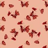 Doodle butterflies seamless pattern Stock Photos