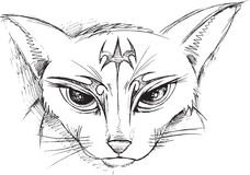 Doodle Cat Face Vector Stock Photography