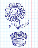 Doodle chamomile Stock Image