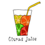 Doodle citrus juice Stock Images