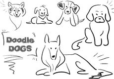 Doodle dog 003. Funny characters, different doodle dogs for funny life`s stories Stock Photography