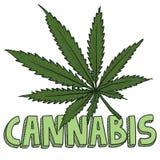 Bosquejo de la marijuana del cáñamo Foto de archivo libre de regalías