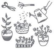 Doodle el cultivar un huerto de flores con los crisoles, latas Imágenes de archivo libres de regalías