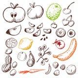 Doodle fijado - frutas y verdura Foto de archivo libre de regalías