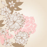 Doodle Floral Background Color Royalty Free Stock Image