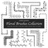 Doodle floral brushes Royalty Free Stock Image
