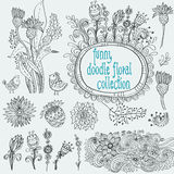 Doodle floral collection Royalty Free Stock Images