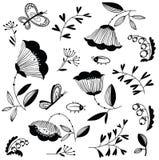 Doodle floral decorative design elements set with bugs  Stock Images