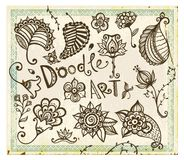 Doodle floral design elements. Vector set. Stock Images