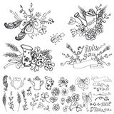 Doodle  floral group,hand sketched elements set.Outline Stock Photography