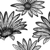 Doodle floral seamless  pattern Royalty Free Stock Image