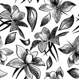 Doodle floral seamless vector pattern Royalty Free Stock Images