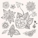 Doodle flowers set. Vector set of doodle flowers. Hand sketched royalty free illustration
