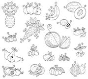 Doodle fruits, berries Royalty Free Stock Photo