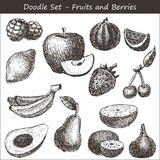 Doodle fruits and berries Royalty Free Stock Image