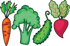 Doodle Garden vegetable set with carrot broccoli cucumber beet. Made in cartoon flat style. Vector royalty free stock photography