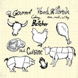 Doodle Gourment και κρέας Στοκ Φωτογραφίες