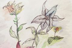 Doodle Graphic Flowers. Hand Drawn Vintage