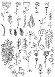 Doodle hand drawn flowers Stock Photos