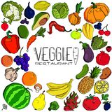 Mega collection of premium quality vector illustrations of fruits and vegetables royalty free illustration