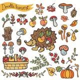 Doodle hedgehog,berries,mushrooms,fruits.Harvest Stock Image