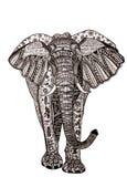 Doodle illustration elephant isolated on white background. Royalty Free Stock Photos