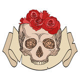 Doodle illustration of a human skull Royalty Free Stock Photography