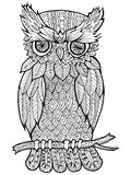 Doodle illustration of owl Royalty Free Stock Image