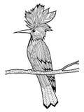 Doodle ilustracja ptak Zdjęcie Stock