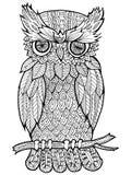 Doodle ilustracja sowa Obraz Royalty Free