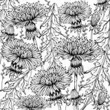 Doodle kwiecistego dandelion tło w wektorze z doodles kolorystyki czarny i biały stroną ilustracja wektor