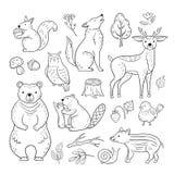 Doodle lasu zwierzęta Lasu dziecka sowy niedźwiedzia ślimaczka dzieci ślicznego zwierzęcego wiewiórczego wilczego jeleniego nakre ilustracji