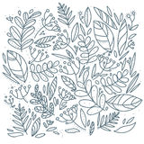 Doodle leaves hand drawn background. Vector illustration Stock Image