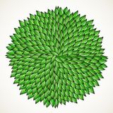 Doodle leaves Stock Images