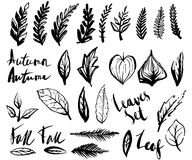 Doodle leaves set Stock Photo