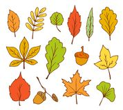 Doodle leaves vector Stock Photography