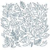Doodle liści ręka rysujący tło również zwrócić corel ilustracji wektora Obraz Stock