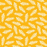 Doodle nature pattern of african collection. Royalty Free Stock Image