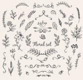 Doodle natury elementy Obraz Stock