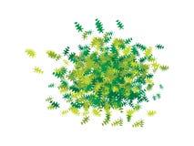 Oak Leaf Confetti royalty free illustration