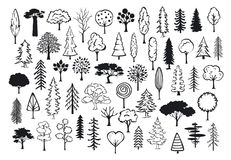 Doodle park forest conifer abstract silhouettes outlined trees. In black color collection set Stock Image