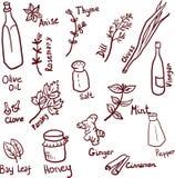 Doodle pikantności set ilustracji