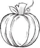 Doodle Pumpkin Vector Stock Photo