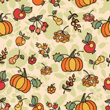 Doodle seamless pattern.Autumn harvest fruit  Royalty Free Stock Images